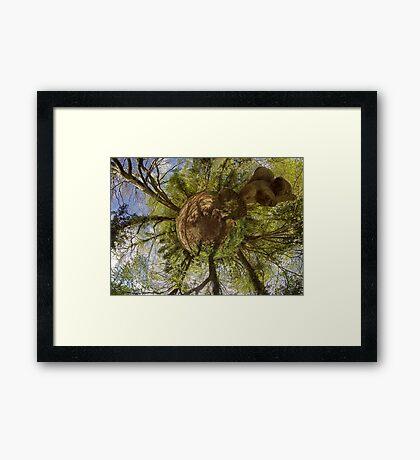 Squirrel Sculpture on path through Prehen Woods,  Derry Framed Print