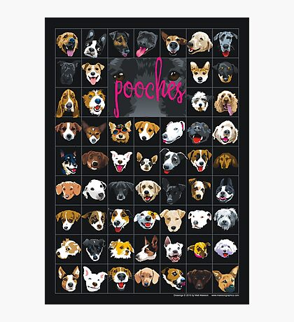 pooches Photographic Print