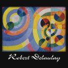 Delaunay - Circular Forms by William Martin