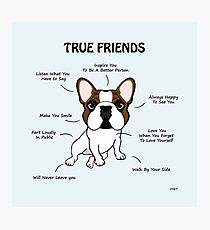True Friends Frenchie  Photographic Print
