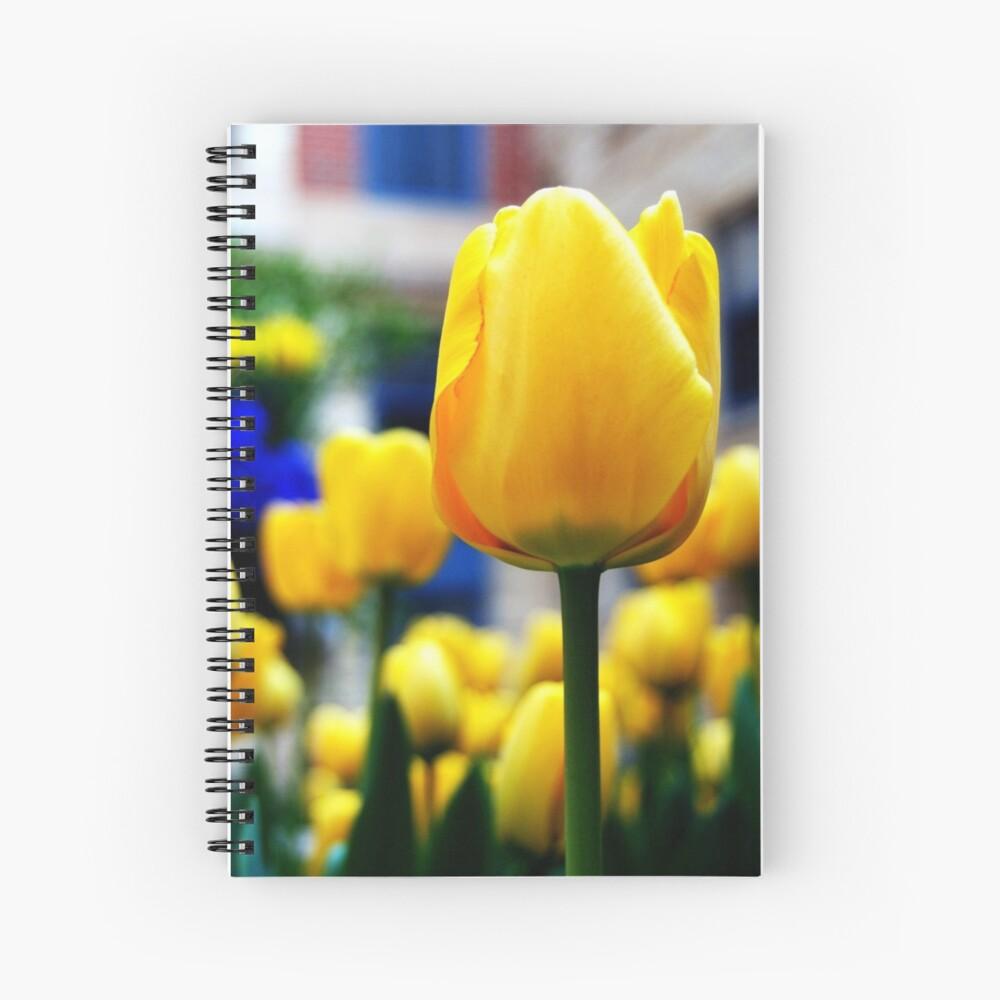 Tulpen (horizontal) Spiralblock