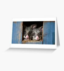"""Poppy & Ivy"" Brushtail Possums Greeting Card"