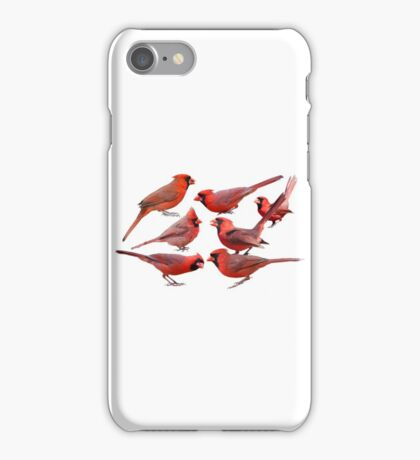 Seven Red Birds A Chirping iPhone Case/Skin