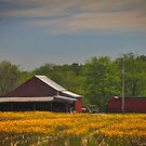 Indiana farm by klh0853