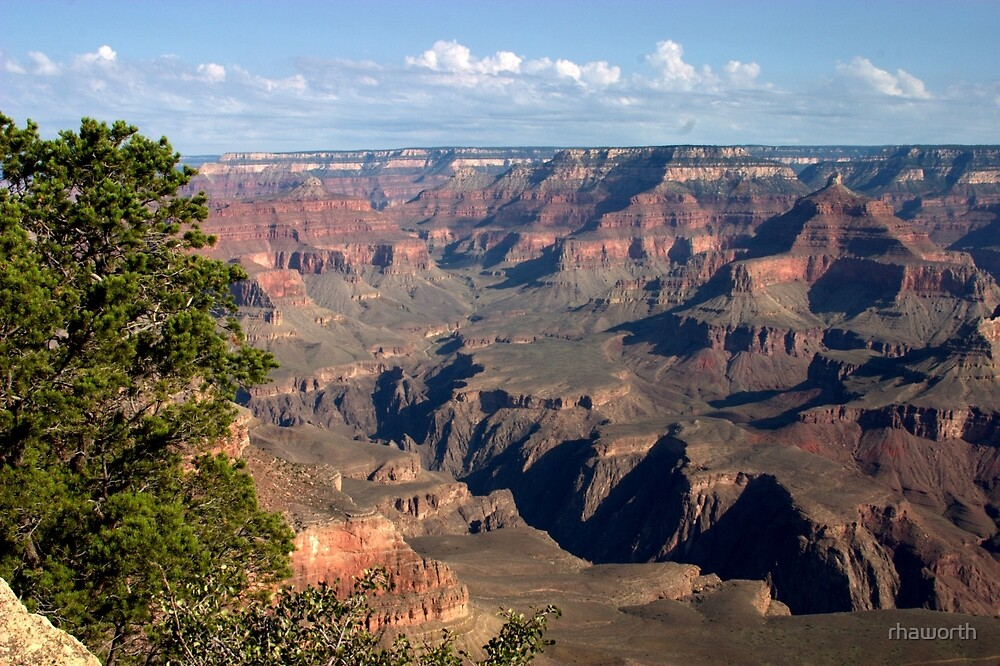 Grand Canyon at Dawn by rhaworth