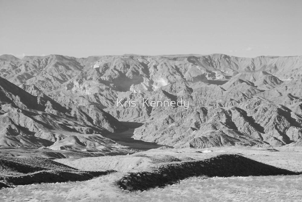 Nevada Desert by Kris  Kennedy