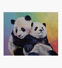 Panda Hugs Photographic Print