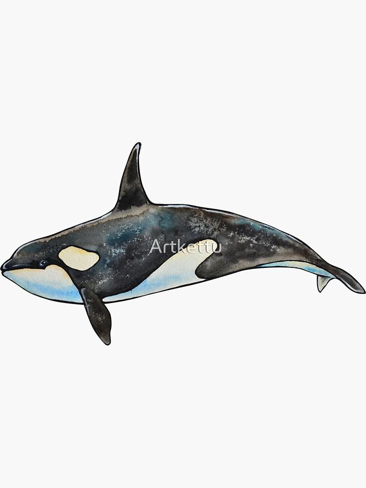 Orca von Artkettu