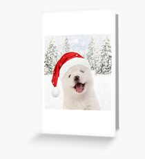 Samoyed puppy wearing Christmas hat Greeting Card