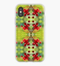 Kalina Mosaic iPhone Case