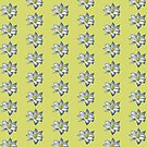 White bluish Clematis by Gilberte