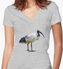 Neutral Ibis  Women's Fitted V-Neck T-Shirt