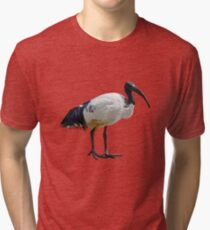 Neutral Ibis  Tri-blend T-Shirt
