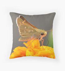 Butterfly On Orange Flower Throw Pillow
