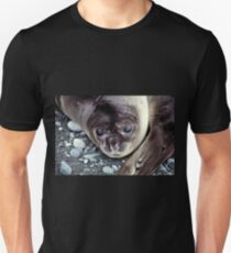 Babies, Nose to Tail. Southern Elephant Seal Pups, Macquarie Island  Unisex T-Shirt
