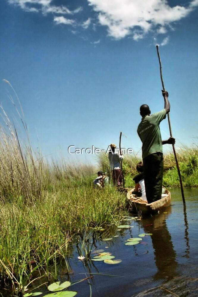 Mokoro Safari, Okavango Delta, Botswana by Carole-Anne