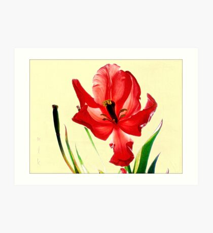 December's Red Tulip Art Print