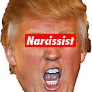 Trump Narcissist by Thelittlelord