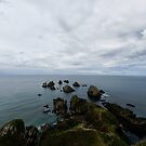Nugget Point, New Zealand by Norman Repacholi