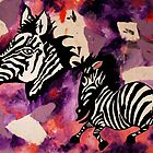 Zebra Dreams by Kayleigh Walmsley