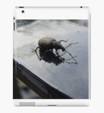 Bug off iPad Case/Skin