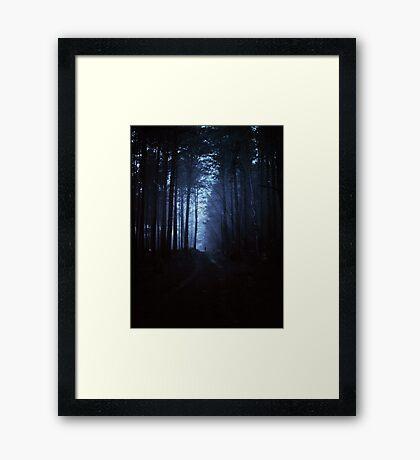 Bosque oscuro Lámina enmarcada