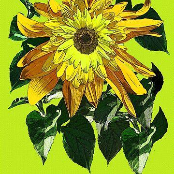 Exuberant Sunflowers -  by DAdeSimone