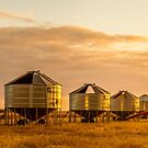 Harvest's over by Dave  Hartley