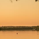Relaxing on the river by Dave  Hartley