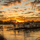 Golden Ferry by Dave  Hartley