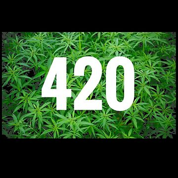 420 by sarahneely123