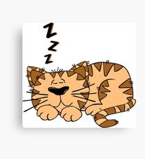 Animal Cartoon Cat Sleeping Canvas Print