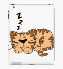 Animal Cartoon Cat Sleeping iPad Case/Skin