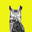 Big owl by Animalsindresse
