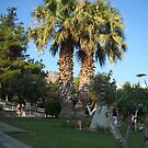 Athens Greece by Vitta