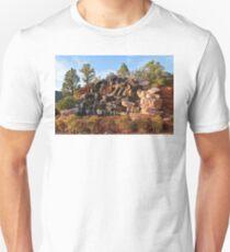 Sedona Waterfall T-Shirt