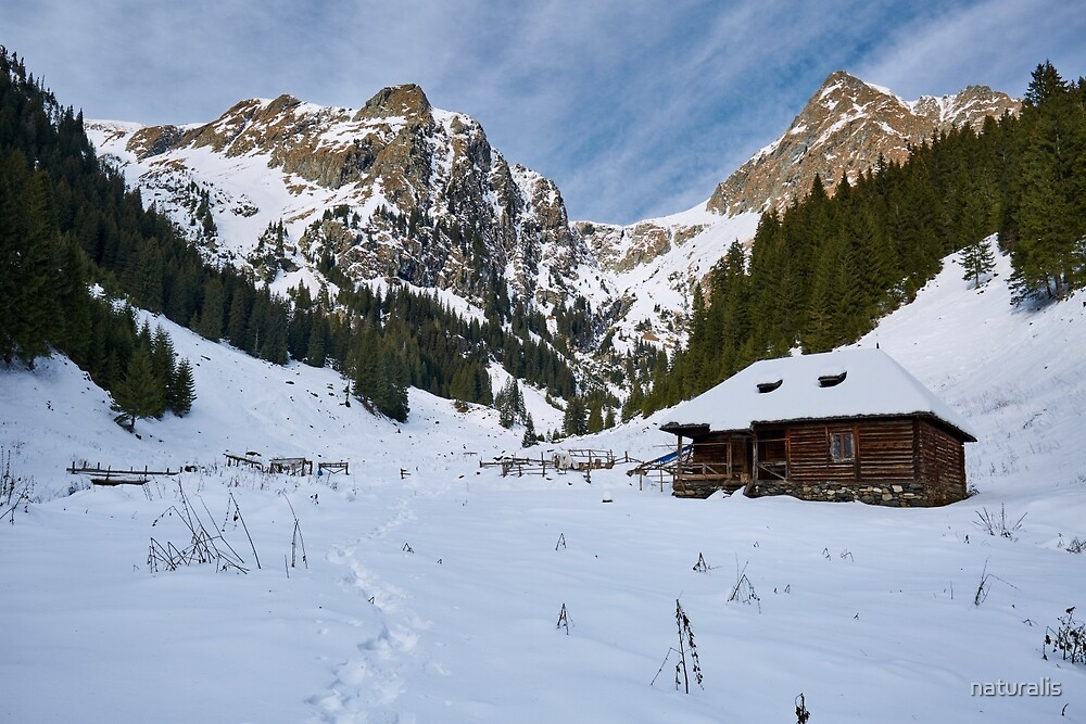 Mountain landscape on wintertime by naturalis