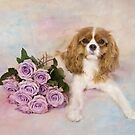 Cavalier King Charles Spaniel With Purple Roses by daphsam