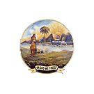Flag of Florida, 1868-1900 by abbeyz71