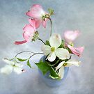 Pink and White Dogwood Still Life by LouiseK