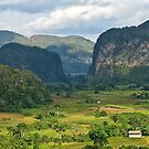 Valle de Los Vinales, Cuba by David Chesluk