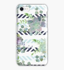 Green colorful succulent Echeveria seamless vector design print iPhone Case/Skin