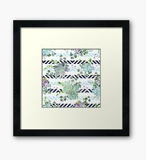 Green colorful succulent Echeveria seamless vector design print Framed Print