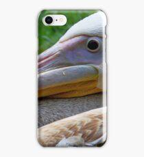 A Pelican Up Close iPhone Case/Skin