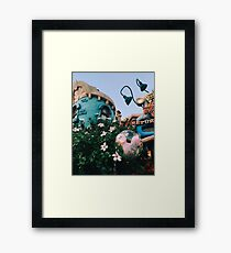 Toontown Flowers Framed Print