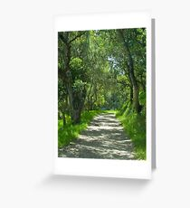 Pathway under the oaks- Monterey, California Greeting Card