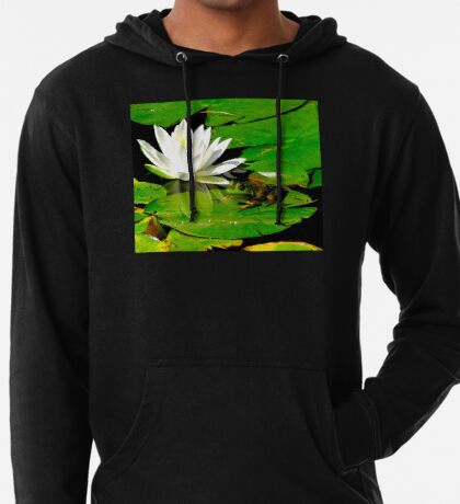 Basking in the reflection Lightweight Hoodie