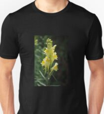 Yellow Toadflax T-Shirt