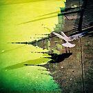 Untitled by shutterdork