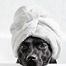 Bath Time by Michelle McMahon